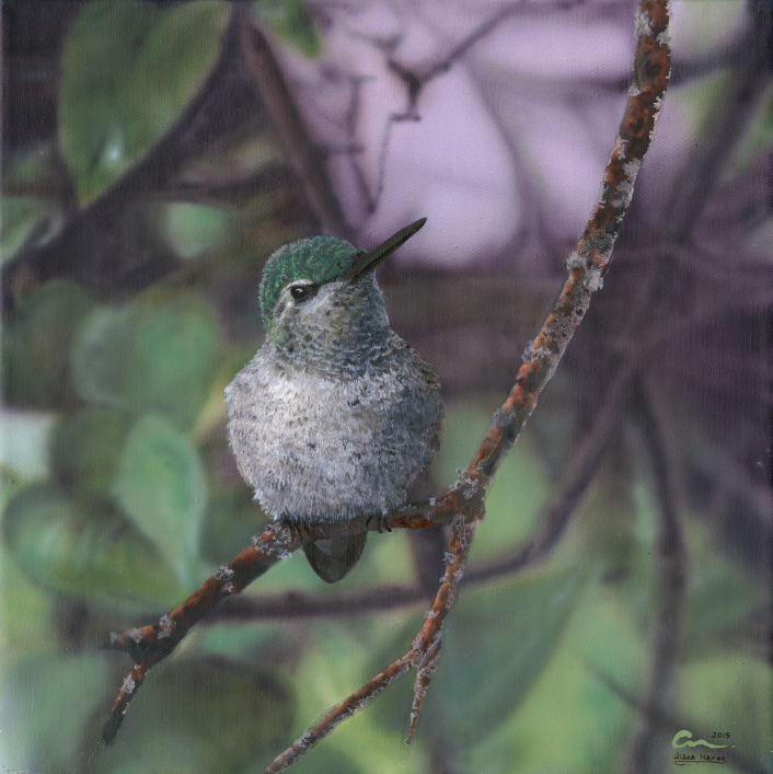 Painting of a baby hummingbird -Click on image to order a Giclee Print.
